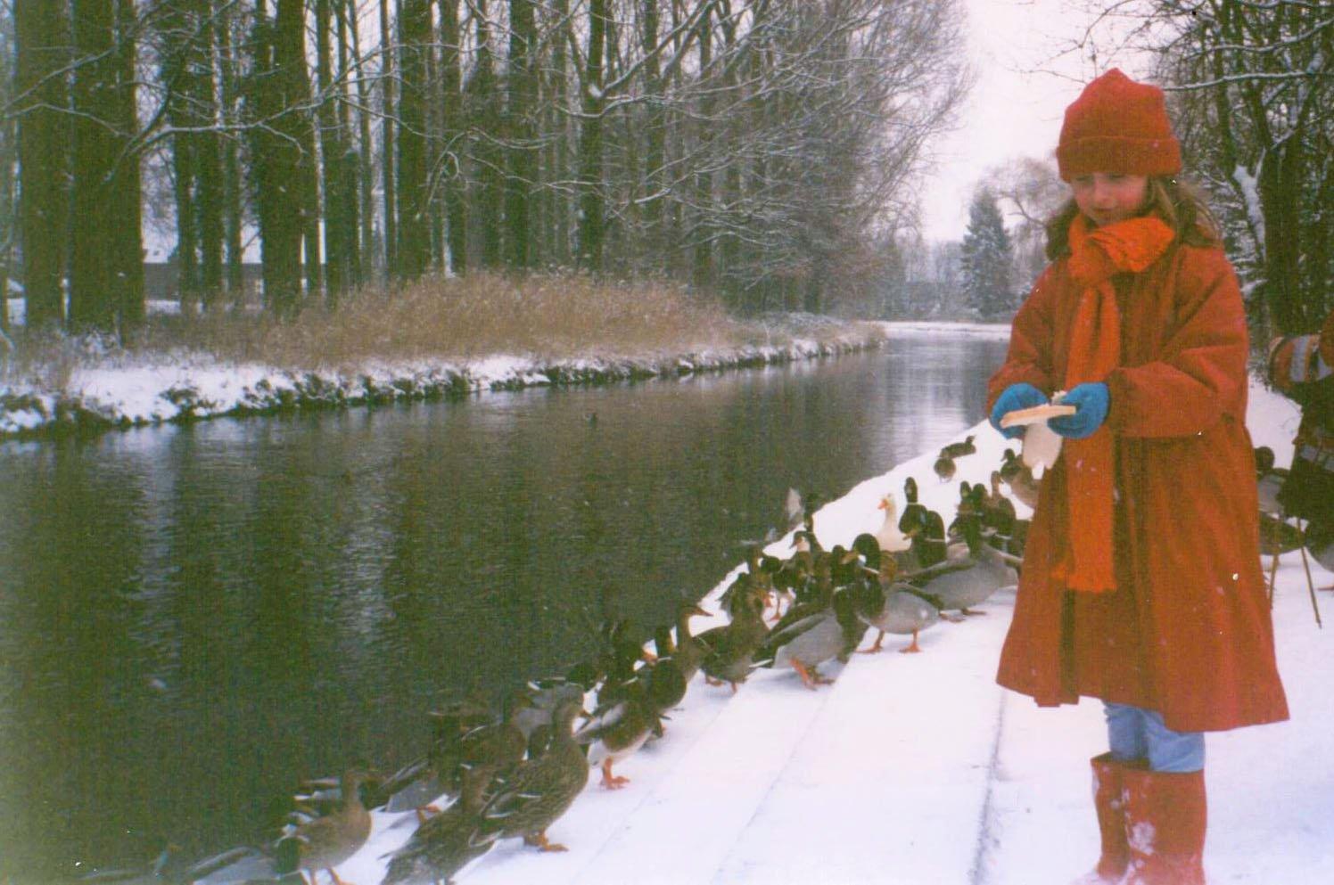 Ferrier - Ducks