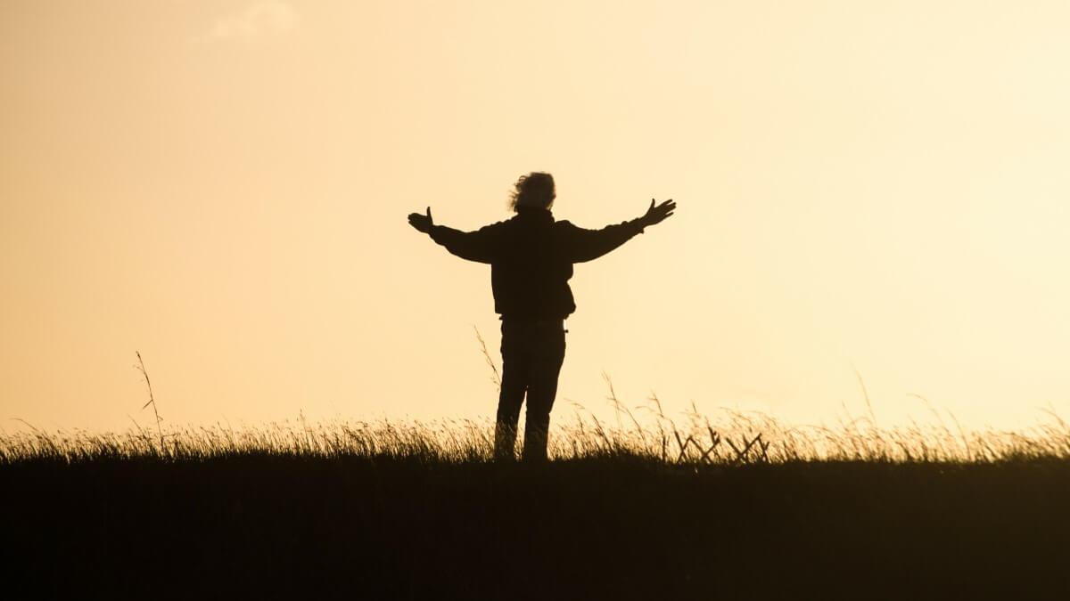 The Transformative Power of Gratitude Blog